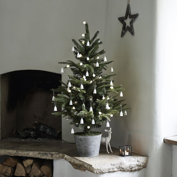 Potted Spruce Christmas Tree - 3ft | Christmas Trees | Christmas Decorations | Christmas | The White Company UK