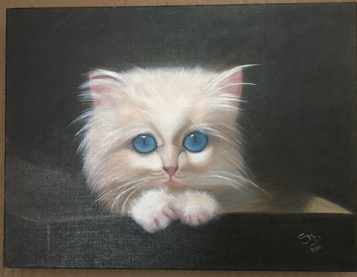 Kitty Cat - A3