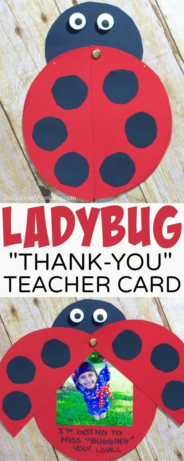 Show your appreciation for your hard-working educators with an adorable kid-made Ladybug Teacher Thank You Card. Easy paper craft and keepsake photo gift. FREE PRINTABLE pattern