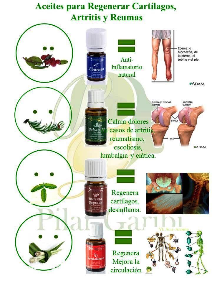 Calmar dolores artríticos y regenerar cartílagos es muy fácil si te ayudas con aceites esenciales.