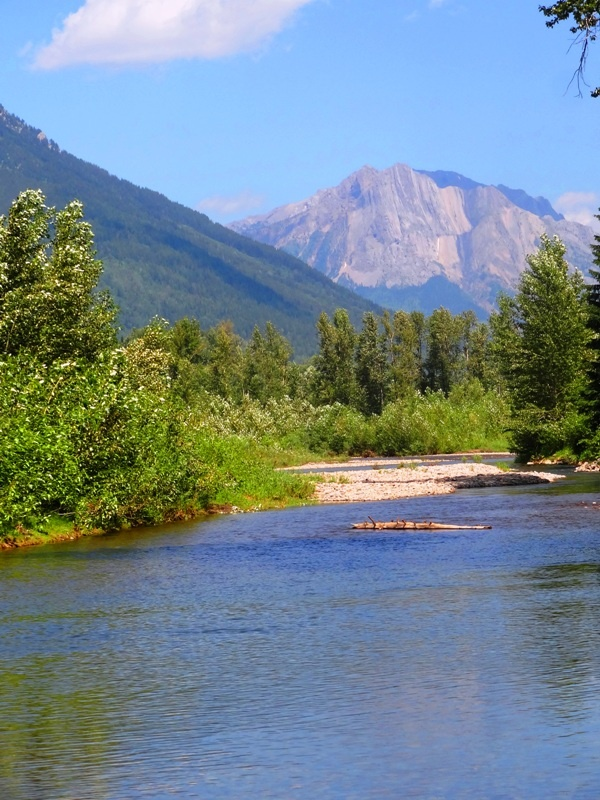 Fly Fishing on the Elk River in Fernie, BC, Sport and adventure region Kootenays