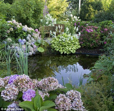 25 best ideas about Small garden ponds on Pinterest
