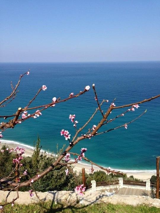 Spring in Pelion!!!!