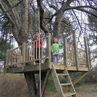 A wonderfully simple platform for kids by artisan tree and for Simple tree fort ideas