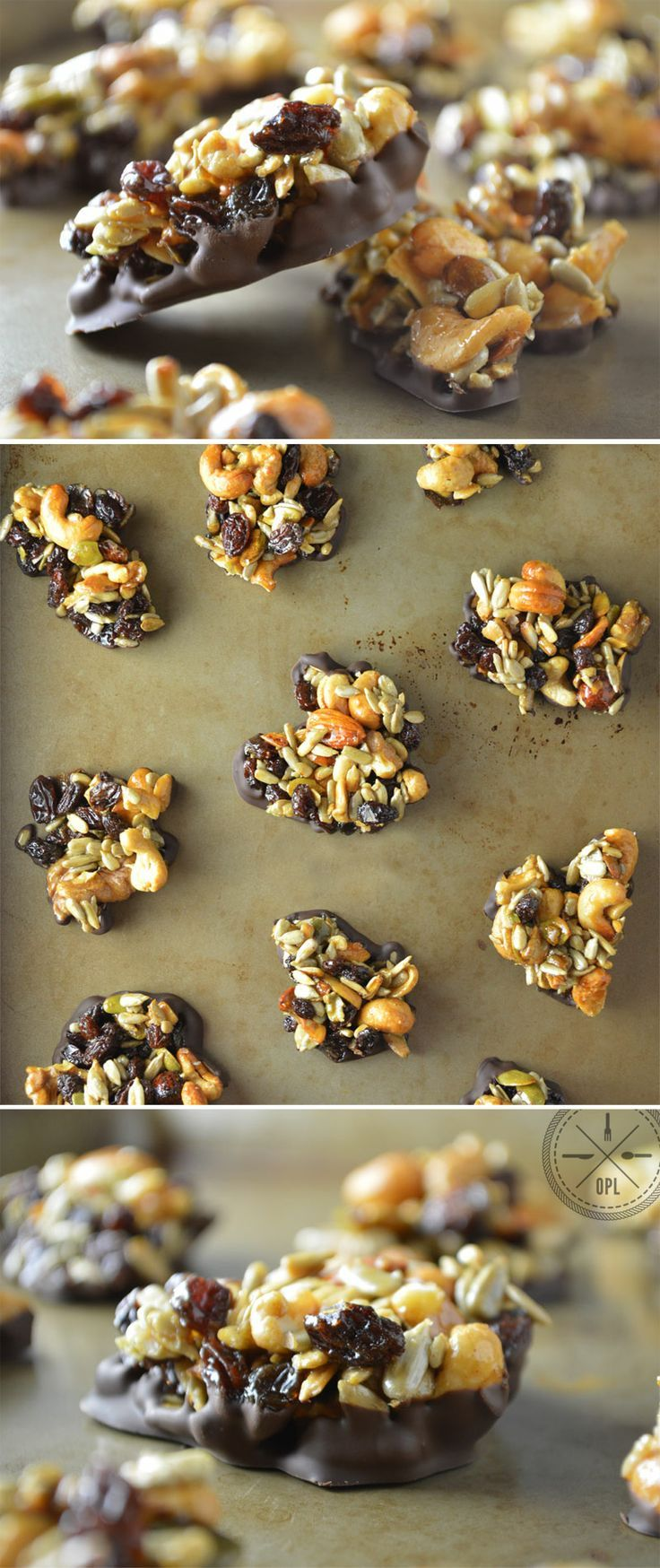 Back Country Clusters by Our Paleo Life - Nuts, seeds, and dried fruit sweetened with honey and wrapped in dark chocolate. #paleo