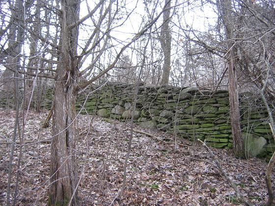 Historic Wall Northport 2         This is an existing historic dry stone wall near the area where the Sixth Town Workshop was held in 2007.    The wall is at least 150 years old and runs up a steep hill and through a farm meadow. It can be found on the south side of County Road 15, about a mile east of Northport in Prince Edward County. Lovely flat stones were used to construct this well built dry stone wall which has now become obscured by trees and brush.