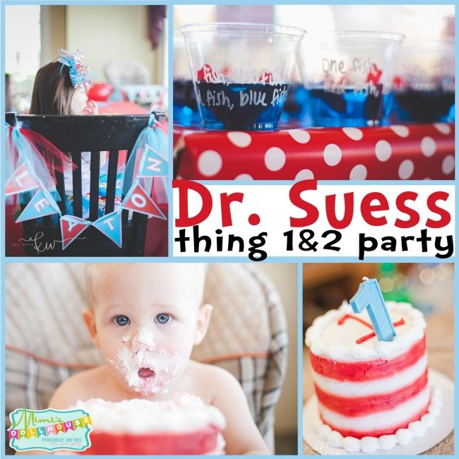 Dr Seuss Birthday Party Boys ThemesDr