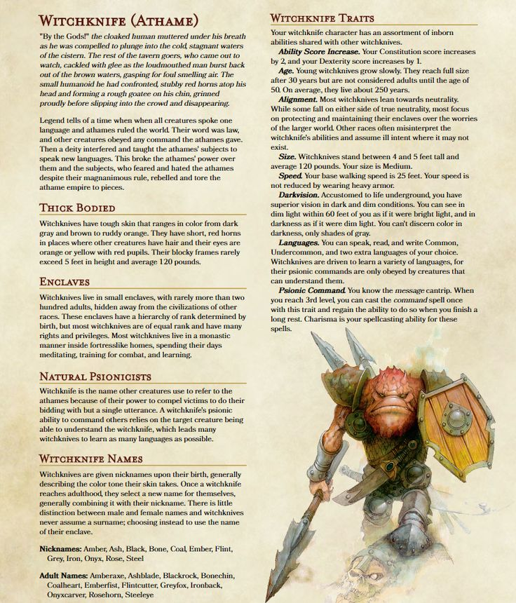 Dnd Races Images - Reverse Search