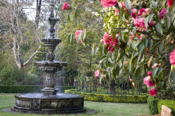 Los pazos gallegos. Jardín botánico del Pazo Quinteiro da Cruz | El Blog de La Tabla