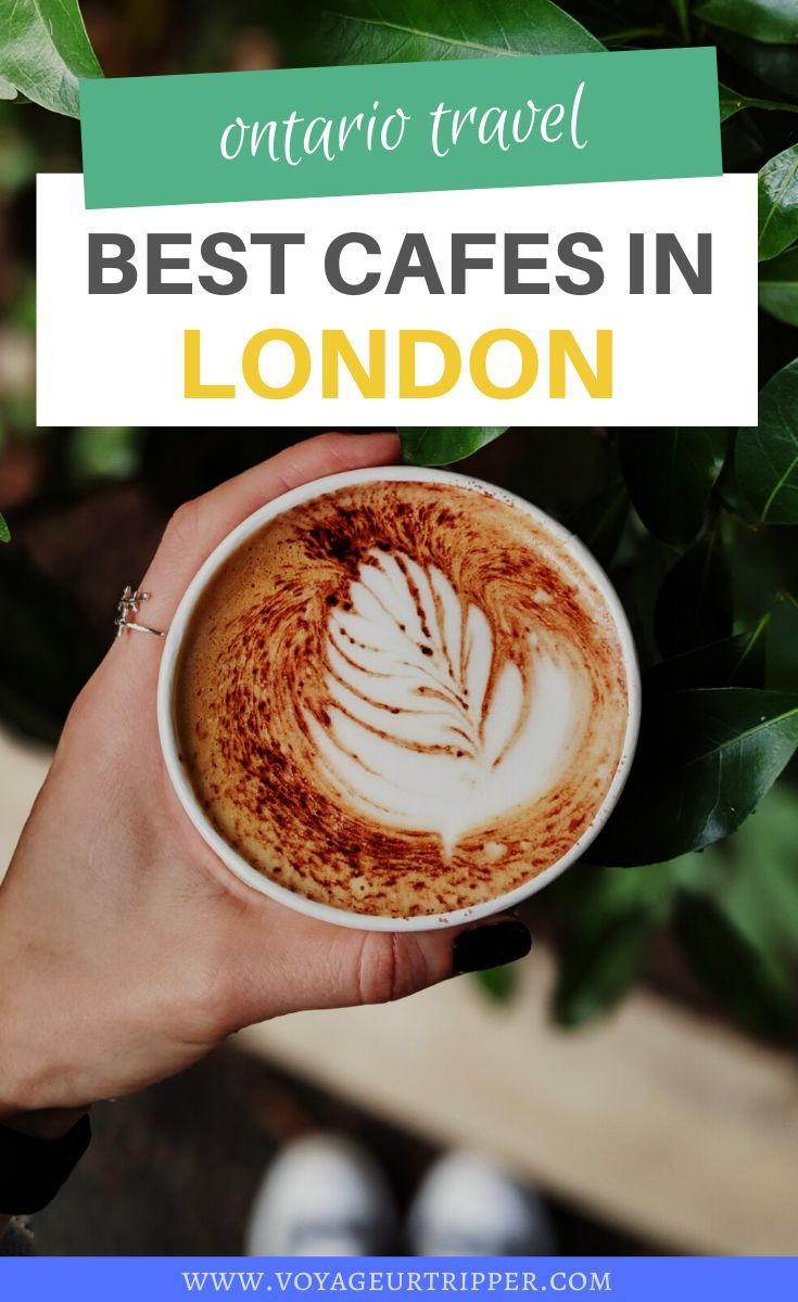 A Local S Guide 10 Best Cafes And Coffee Shops In London Ontario In 2020 Cool Cafe Dairy Free Coffee Dairy Free Coffee Creamer