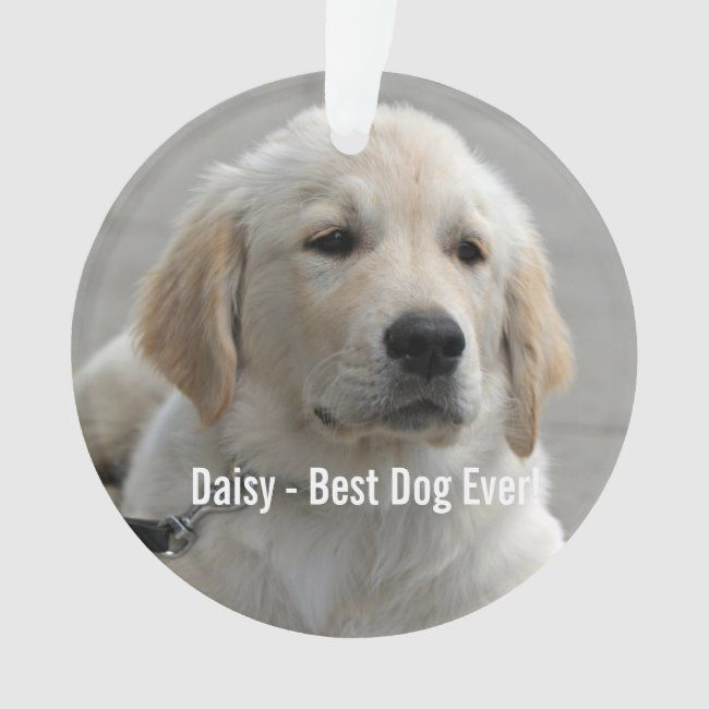 Personalized Golden Retriever Dog Photo And Name Ornament Golden Retriever Dog Lover Puppy Ornament In 2020