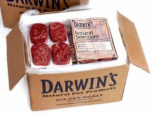 Boxed meat Pet food Delivery Program Darwin's Pet