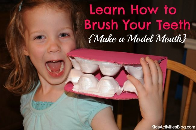 How to Brush Your Teeth with a Giant Mouth Model!