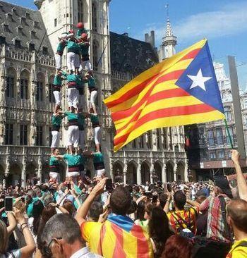 Castellers pel dret a decidir arreu d'Europa. 8/06/2014
