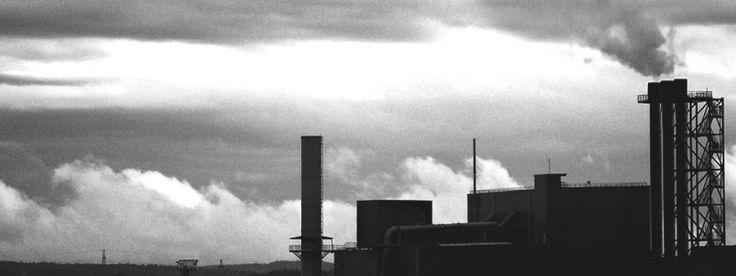 Die letzte Woche war richtig heftig. Am Dienstag versammelten wir uns trotz strömenden Regens vor dem Kanzleramt in Berlin. Wir protestierten gegen die Versuche der Bundesregierung, die neuen Regeln doch noch aufzuweichen. Wir hatten Plakate, Transparente und eine Rauch-Maschine dabei, die (ungiftigen) Smog erzeugte. So übergaben wir 121.626 Unterschriften.