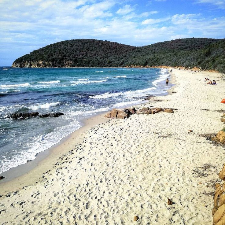 Cala Violina is a beautiful and wild beach  named this way  because of the sound the sandsmake when the wind blows. It can be reached following a trail along an enchanted forest.