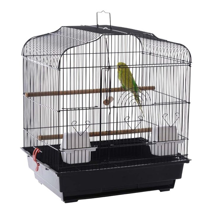 cool budgie cages