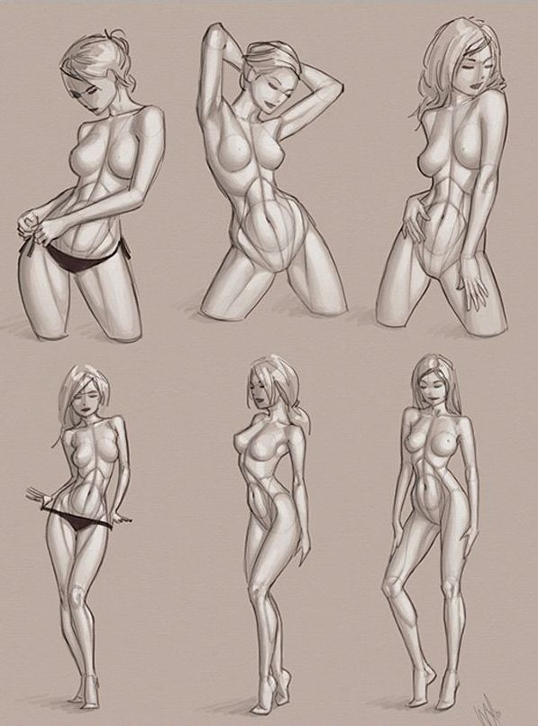 13 best Female Anatomy Scamps images on Pinterest | Anatomy, Anatomy ...