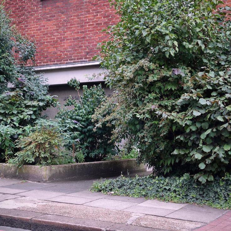 #lavenderhill #magistratescourt #battersea #entrance #side