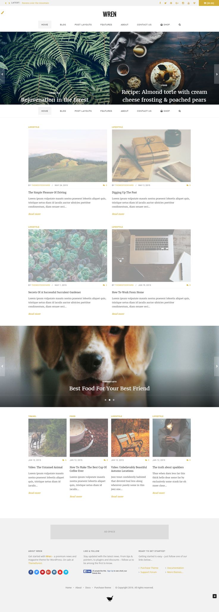 Wren - Responsive Blog, News, & Magazine Theme  Wren – a perfect mix of modern and clean, each detail is designed to be stylish, smart, flexible, and beautiful. This WordPress theme will impress your clients, subscribers, and site visitors by delivering attractive features for your website, magazine, or personal blog. Use multiple homepage layouts, blog layouts, page layouts, and post layouts to showcase your content.
