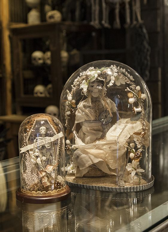 halloween boutique 2014 hauntingly beautiful the setting may be hauntingly beautiful but - Restoration Hardware Halloween