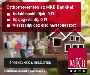 Szabolcs-Szatmár-Bereg megye, Nyíregyháza, Magyar utca #22391537