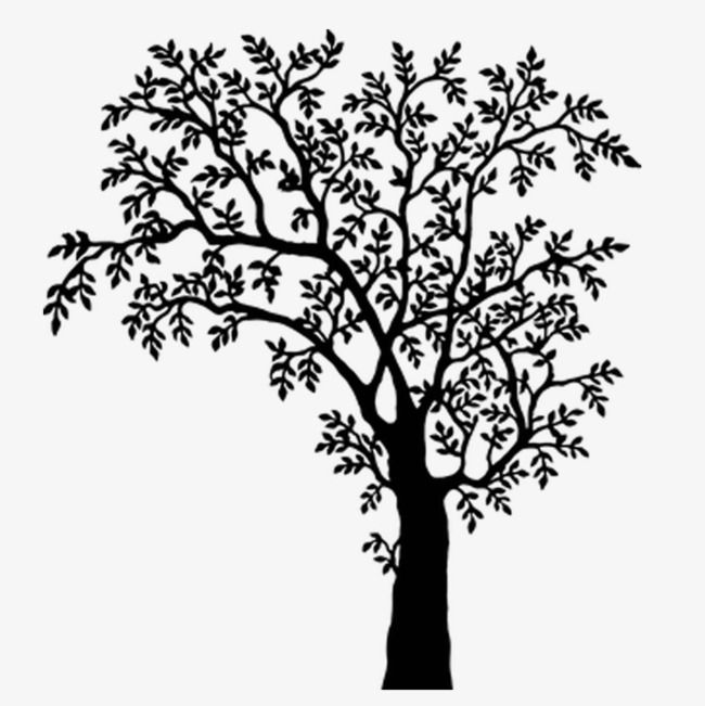 Black And White Tree Branches Tree Illustration Black And White Tree Black Tree