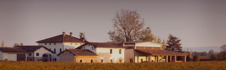 Medici Ermete - Emilia Romagna