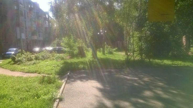 Залито солнцем.