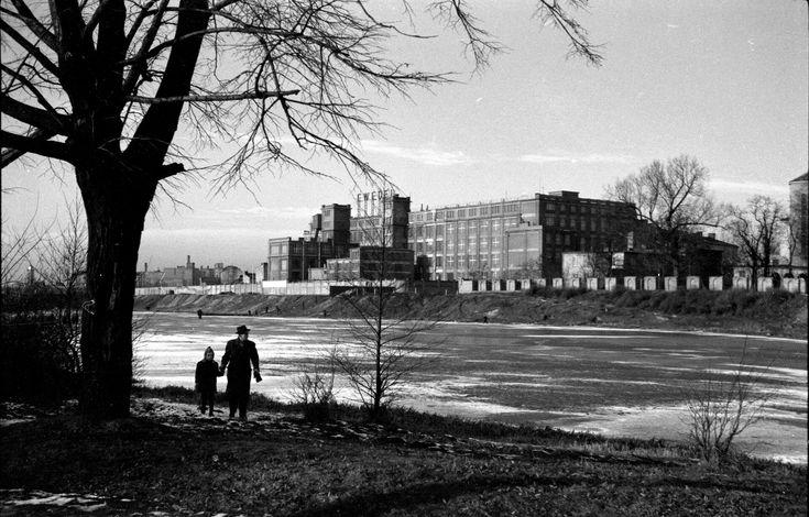 Fabryka Wedla na Kamionku, ok. 1949 r. fot. IS PAN