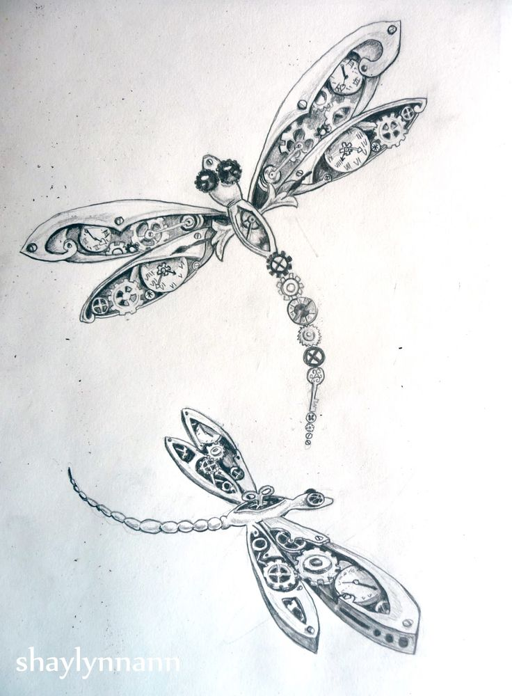 dragonfly drawing tumblr - Google Search