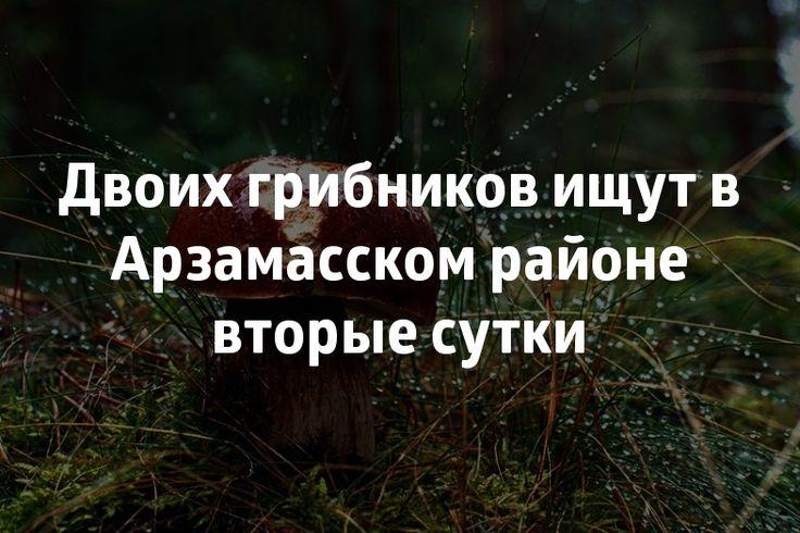 Двоих грибников ищут в Арзамасском районе вторые сутки. >>> Двое мужчин ушли за грибами рано утром 21 сентября и до сих пор не вернулись. #83147ru #район #области #грибники #лес Подробнее: http://www.83147.ru/news/3653