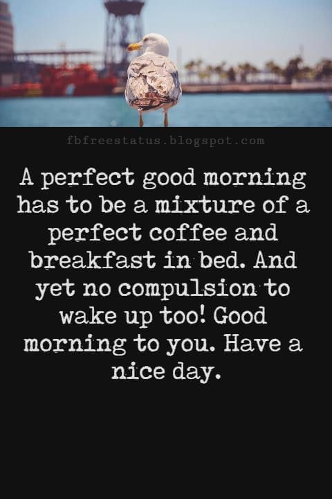 cute good morning text messages a perfect good morning has to be a mixture of a perfect coffee and breakfast in bed and yet no compulsion to wake up too