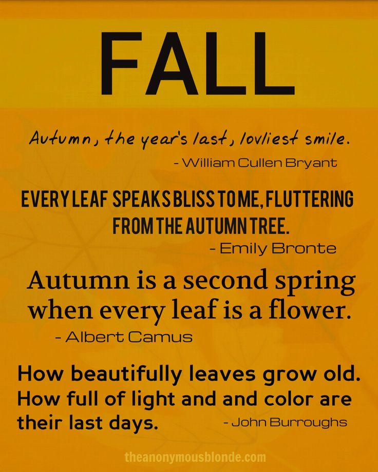 31 Best Fall Quotes Images On Pinterest