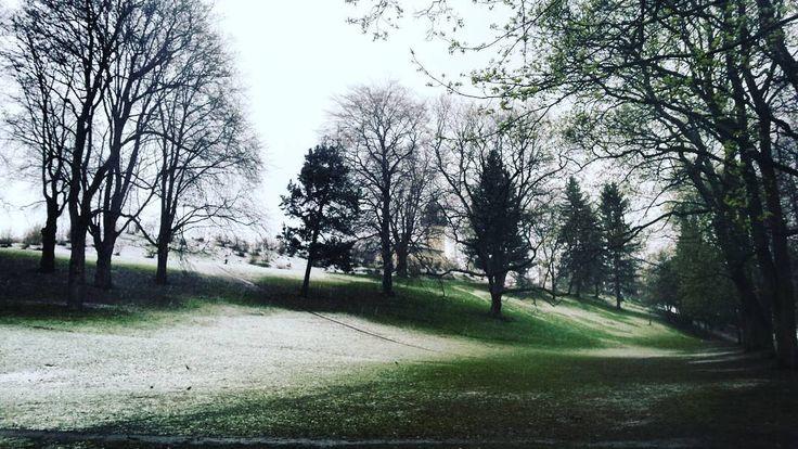 Snow in April #Oslo