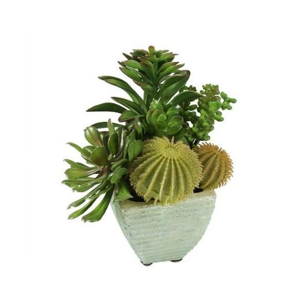 "10"" Chic Botanical Square Potted Decorative Artificial Southwestern... ❤ liked on Polyvore featuring home, home decor, floral decor, plants, fillers, cactus pot, square pots, southwest home decor, cactus home decor and southwestern home decor"