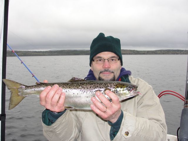 86 best images about 2013 pictures of fish caught on maine for Maine salmon fishing