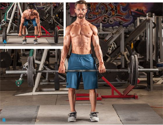Gaining muscle seems simple, but the process is actually guided by specific mechanisms. Learn what they are and finally get the results you want!