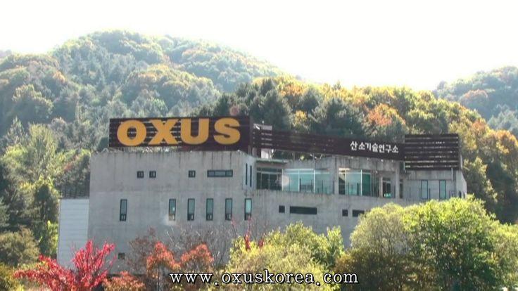 산소발생기 전문기업 (주)옥서스 기업 소개 영상