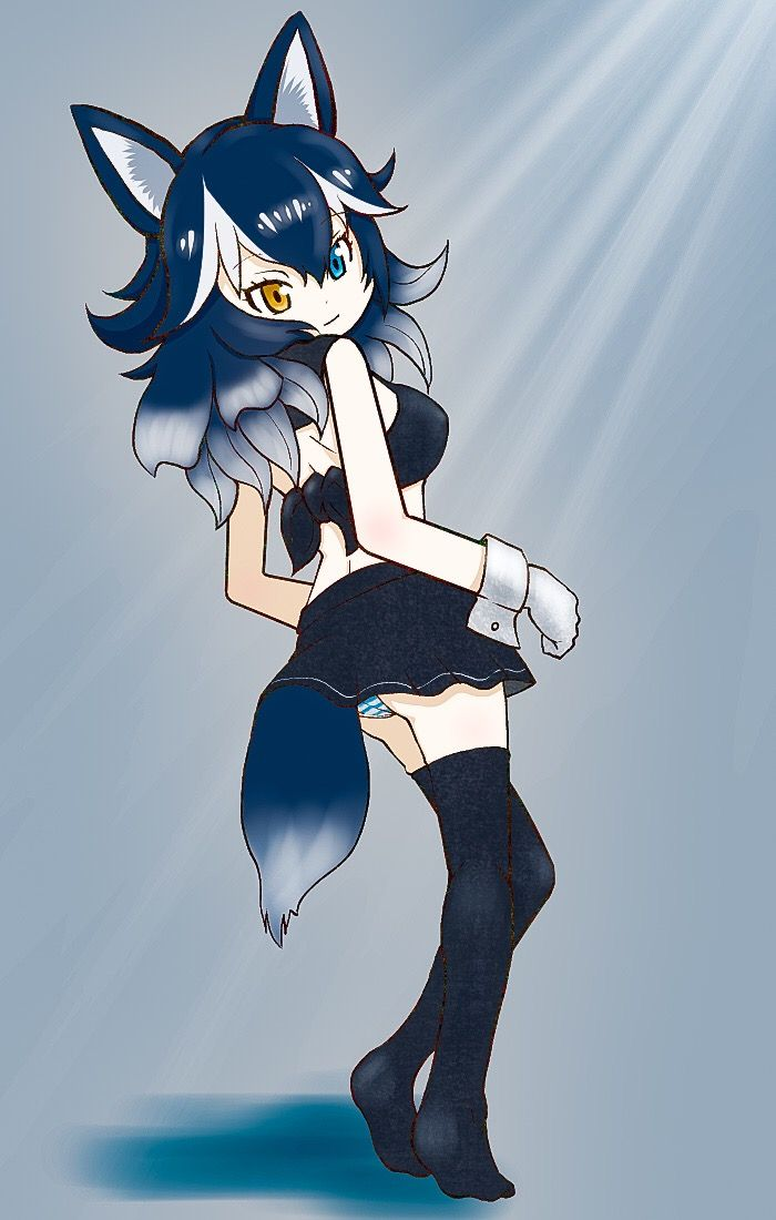 Grey wolf grey wolf kemono friends in 2019 anime - Wolf girl anime pictures ...