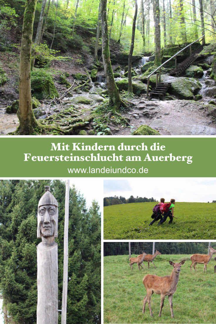 Kleine Wanderung für entspannte Stunden mit Kindern die Abenteuer im Wald lieben. Die Feuersteinschlucht am Auerberg im Landkreis Weilhem/Schongau. Erlebnisbericht