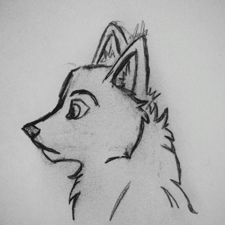 Красивые картинки для срисовки волк