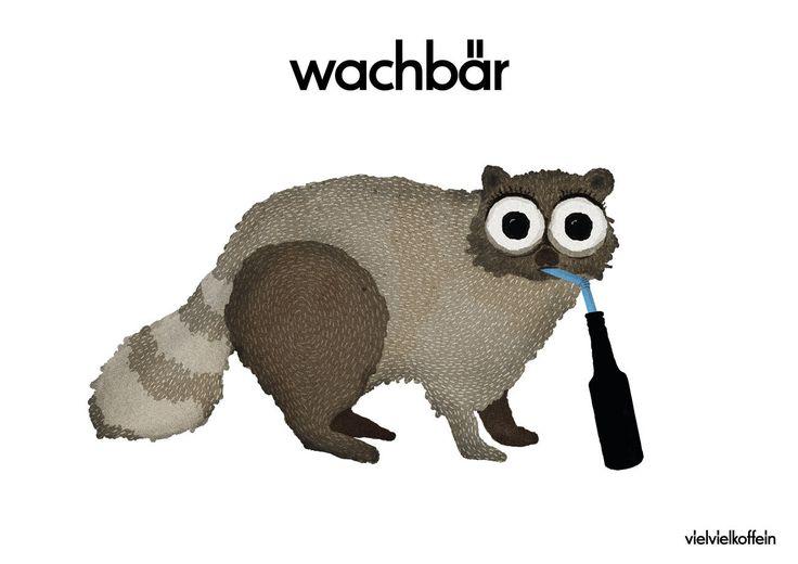 fritz-kola – wachbär