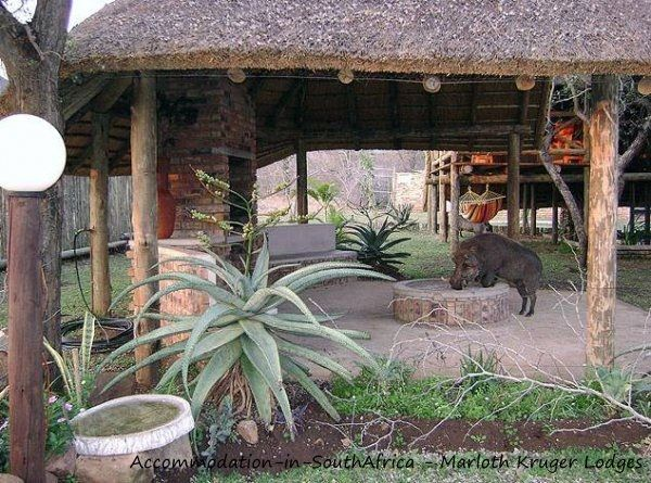 A visitor at the boma at Marloth Kruger Lodge. Marloth Park Accommodation.