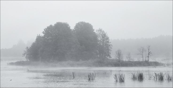 Фотограф Влад Соколовский (Vlad Sokolovsky) - / В утренней тиши / #796529. 35PHOTO