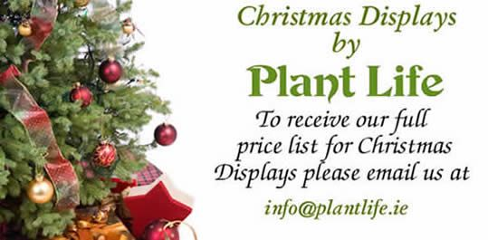 info@plantlife.ie or  (01) 453 6201