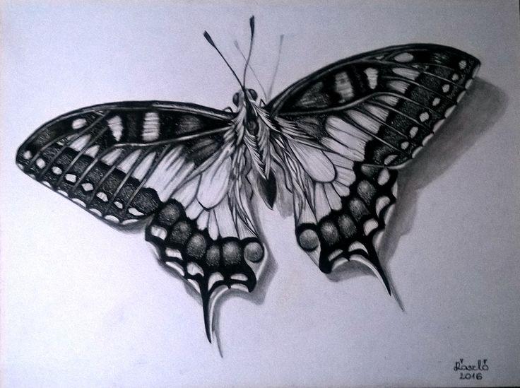 Mű címe: Pillangó portré.  Grafit rajz Médium: A3 akvarell papír Ország: Magyarország Művész: ÁrgyelánLászló