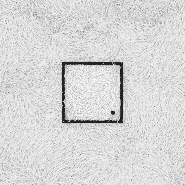 Grass Paper #c4d #render #noctane #daily #design #logo #inspiration #white