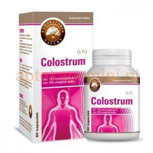 Suplement diety Colostrum (LN) stworzony został na bazie pierwszego krowiego mleka (siary).