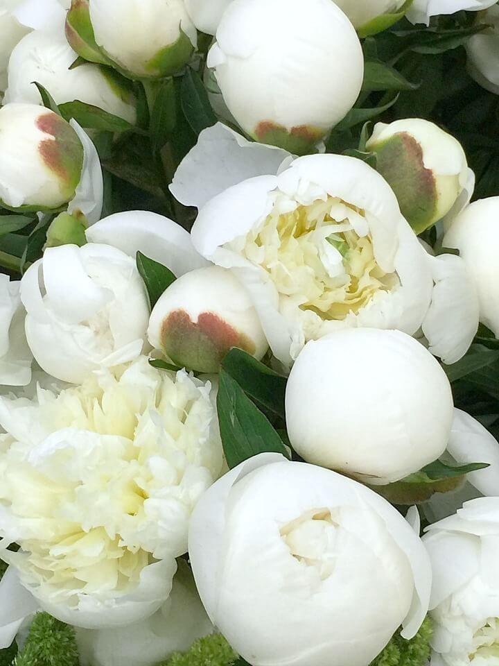 LA Flower Mart – a visit http://mysoulfulhome.com/la-flower-market-the-details/ via bHome https://bhome.us